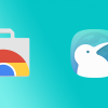 Kiwi Browser Apk Download