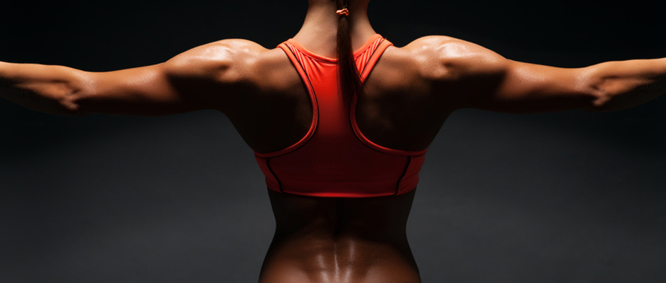 back workouts at home