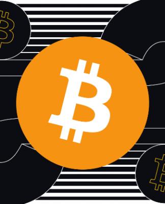 Bitcoin Investor BTC Evolution.