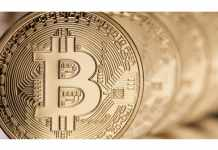 Now it is possible to Bitcoin bet on any sport - 1xBit
