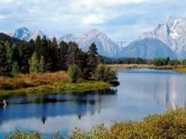 Family Vacation idea in Wyoming