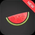 Melon VPN Apk